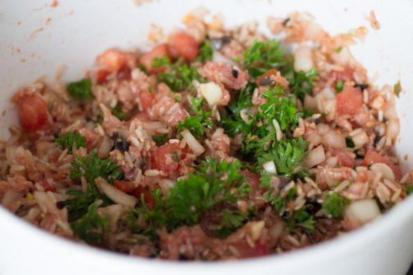 kruiden, gehakt en rijst