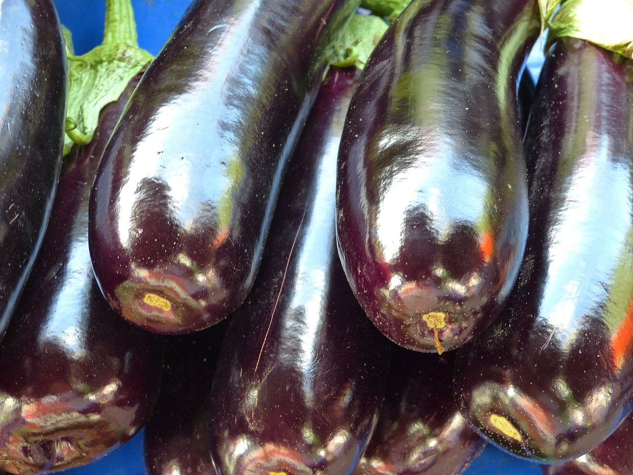 is aubergine groente of fruit